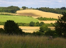 The Chiltern Hills & Thames Valley – 6 hrs